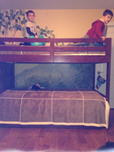 For the record, I did not vote for bunk beds this Christmas.  I was out-voted by ALL the boys.