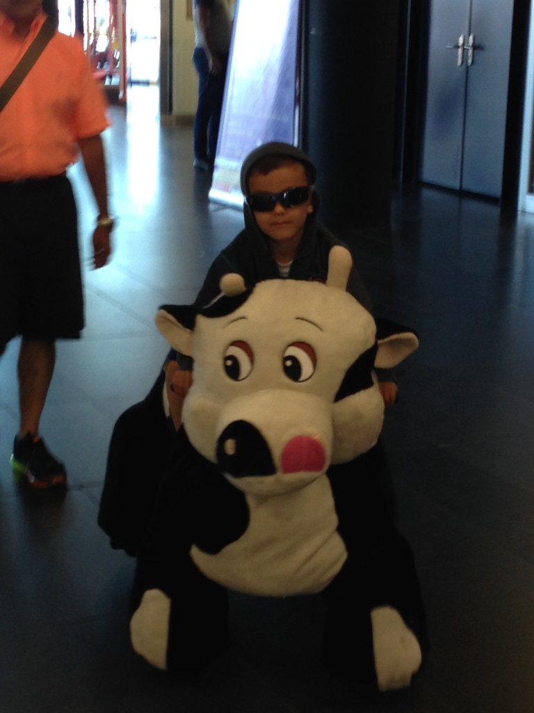 It's not a tiny unibomber on a giant stuffed and motorized cow - it's my son...on a giant stuffed and motorized cow.