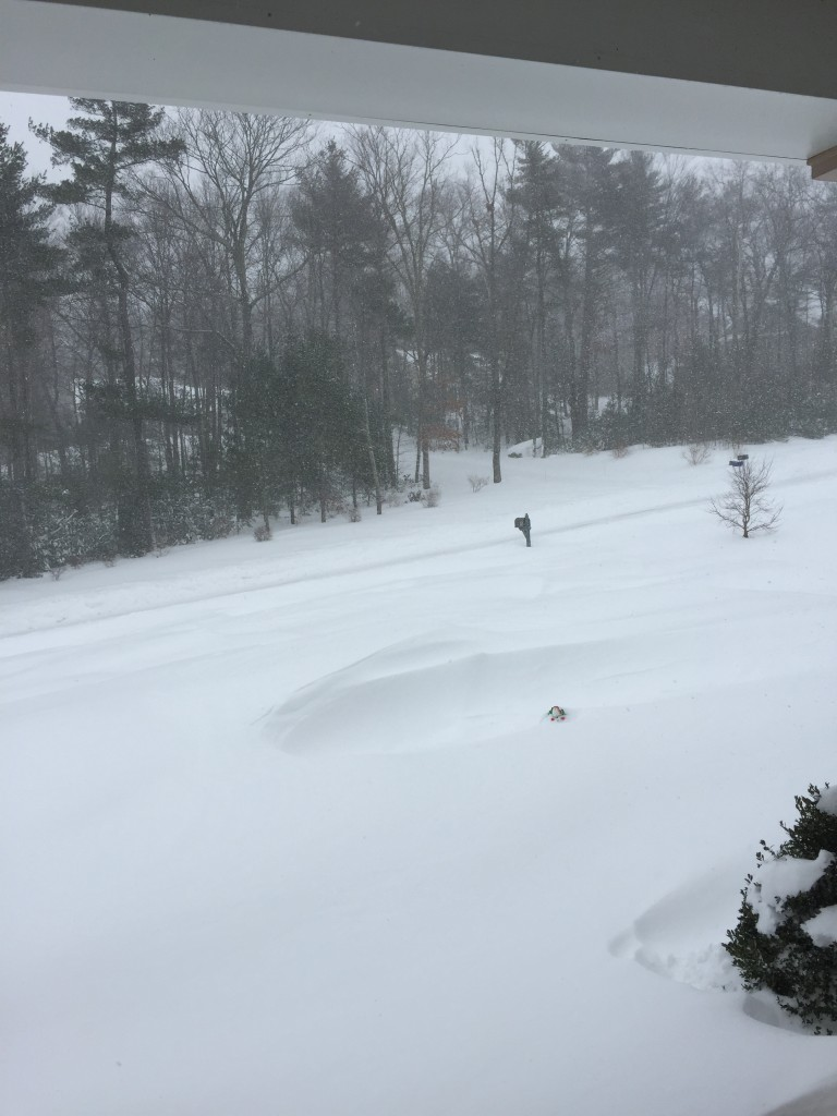 My driveway is somewhere under there and the mailbox is still visible so there's that...