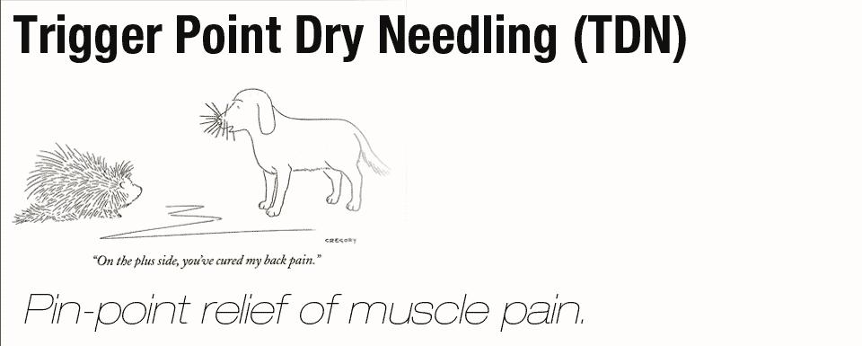 Dry-Needling---1