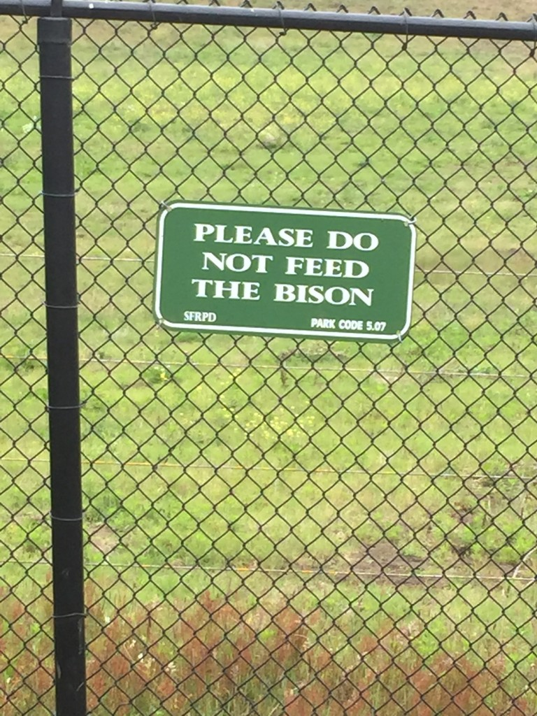 Is this even a consideration while walking though Golden Gate Park?