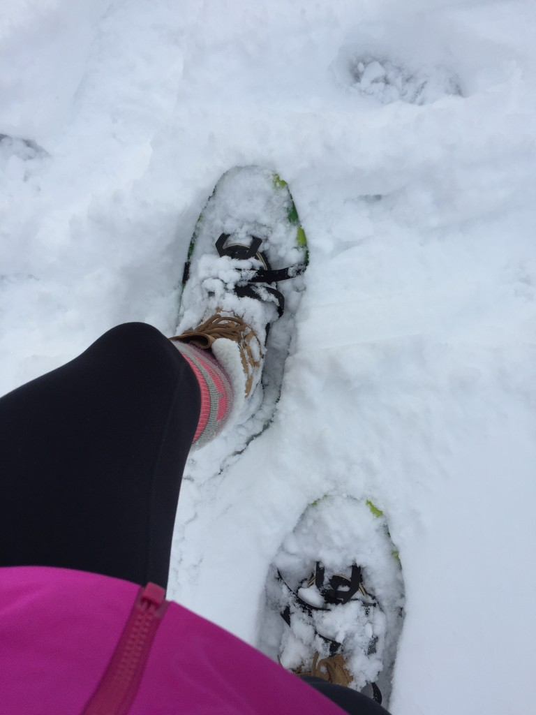 I strapped on my snowshoes while the boys played and went sledding in the yard.